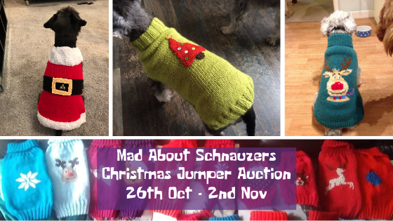 Christmas Jumper Auction