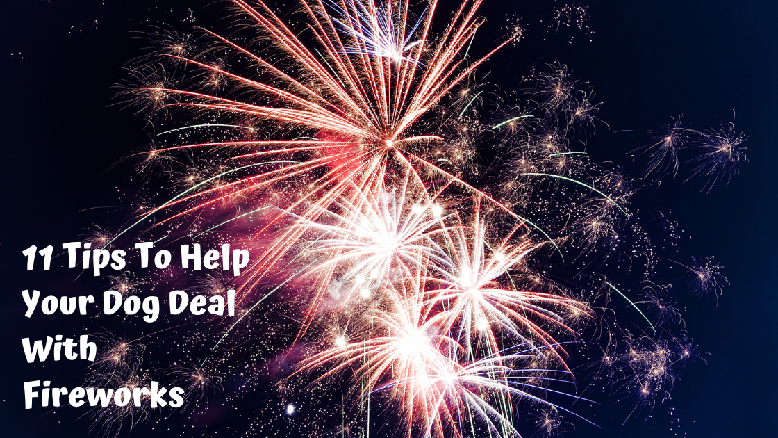 11 Tips to help your dog deal with fireworks